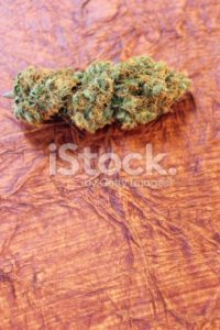 Apricot Kush marijuana vertical