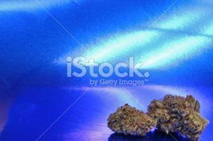 Ghost Cinderella 99 Marijuana Corner