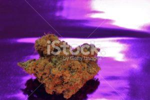 Tropicana Marijuana detail